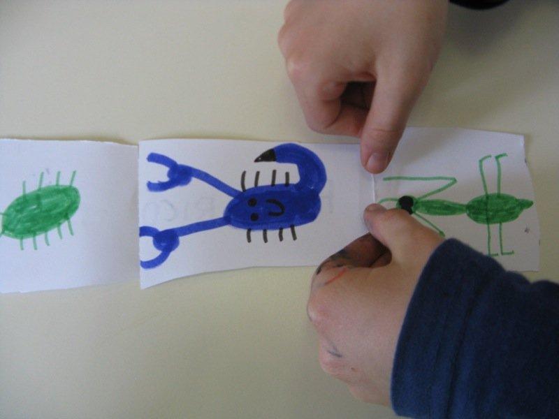 Creatività di Gruppo - Microlibro di Animali